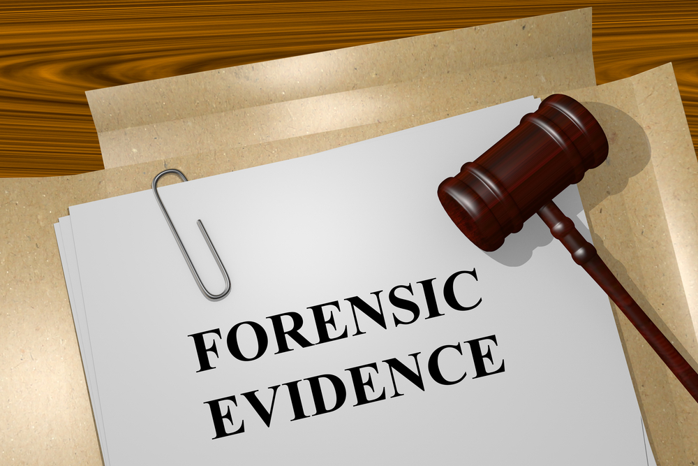Certified Forensic Nurses Soar With The Professional Challenge Lnc